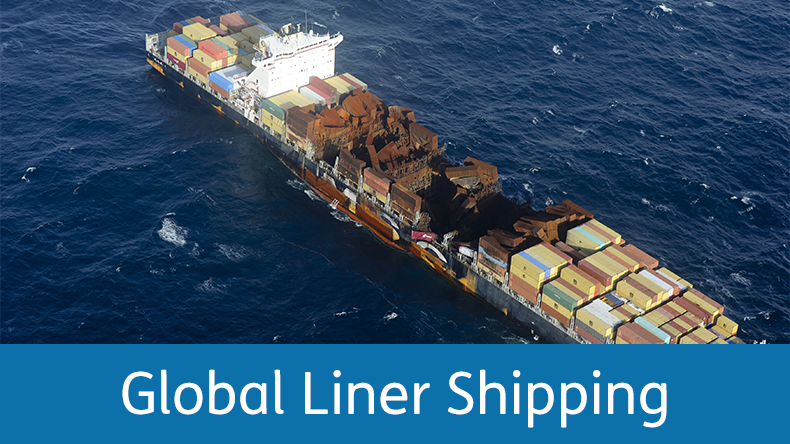 MSC Flaminia with Global Liner Shipping strap